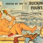 Curt Teich Buckingham