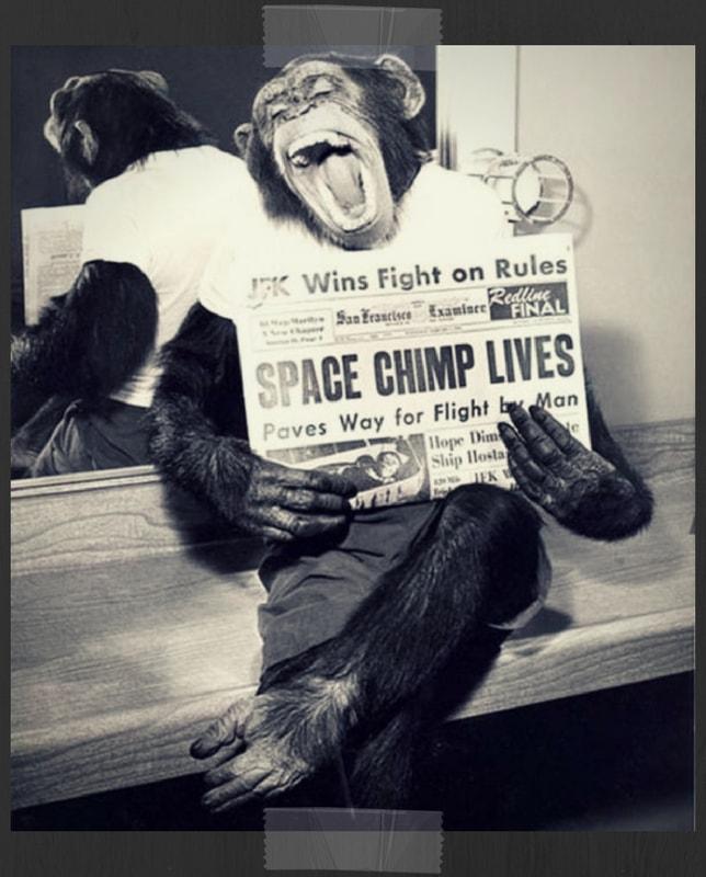 Astrochimp