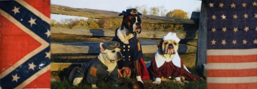 Civil War Pets