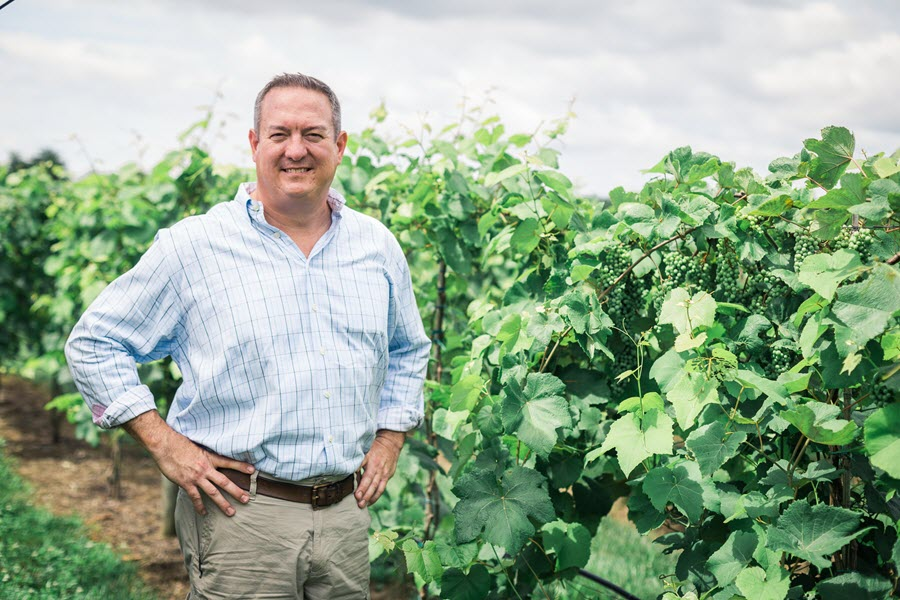 J. Ashton Lough, Winemaker