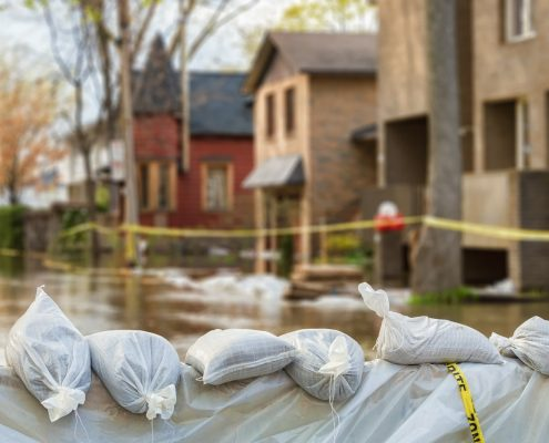 Salvaging Collectibles after a Flood