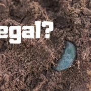 Is it legal to collect, metal detect, or dig for artifacts?