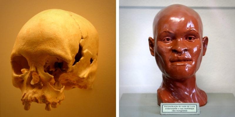 Luzia Skull Brazil National Museum