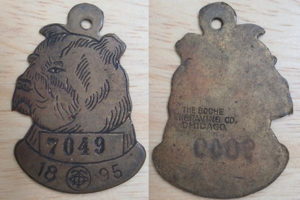 1895 Chicago dog tag