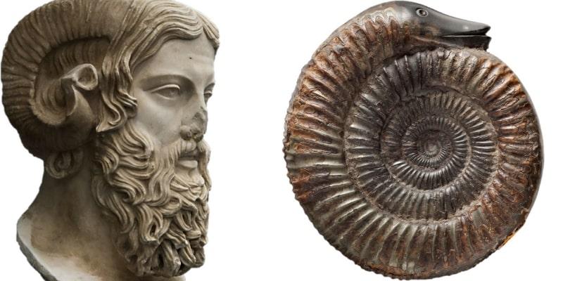 Ammon and Snakestone