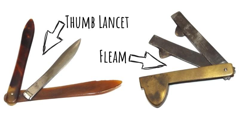 Bloodletting Thumb Lancet & Fleam